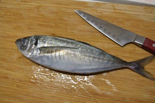 魚のさばき方 みらいママ講座6